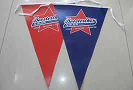 Flag Cloth banner 1.8m (6 అడుగులు) పర్యావరణ ద్రావణి ప్రింటర్ WER-ES1801 2 చే ముద్రించబడింది